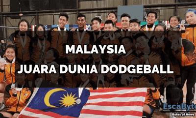 dodgeball world champion
